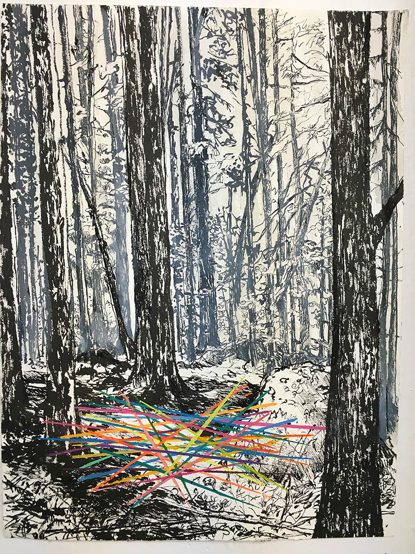 Pick-up-Sticks-2017-Pen-and-ink-pencil-crayon-16x10